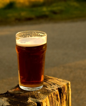 Photo of a pint of beer